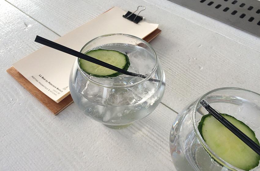 Le-Perchoir-Marais-Rooftop-gin-tonic